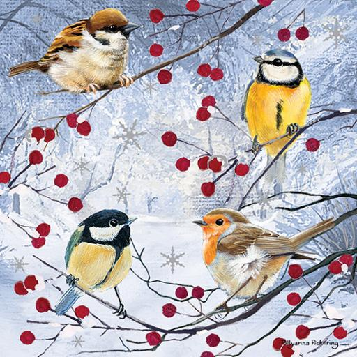 RSPB Small Square Christmas Card Pack - Christmas Gathering