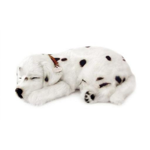 Precious Petzzz - Dalmatian