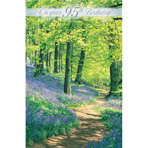 Age To Celebrate Card - 95 Bluebell In Wood