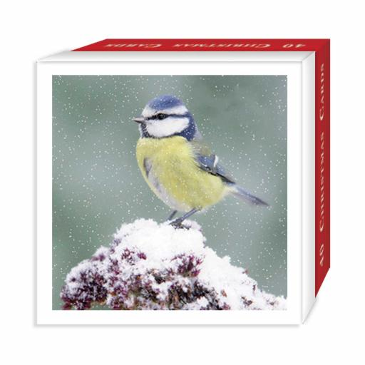 Assorted Christmas Cards - Mixed Birds