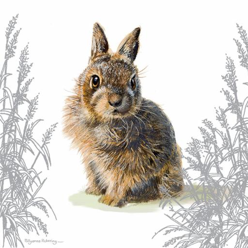 Pollyanna Pickering Countryside Collection Card - Baby Wild Rabbit