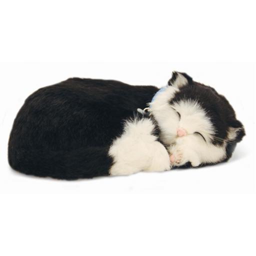 Precious Petzzz - Black & White Short Haired Cat