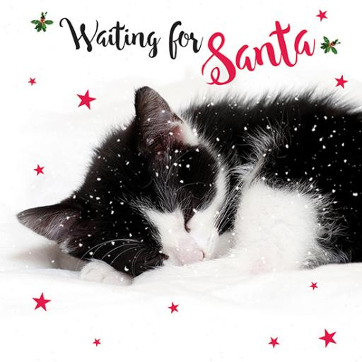 Charity Christmas Card Pack - Waiting For Santa