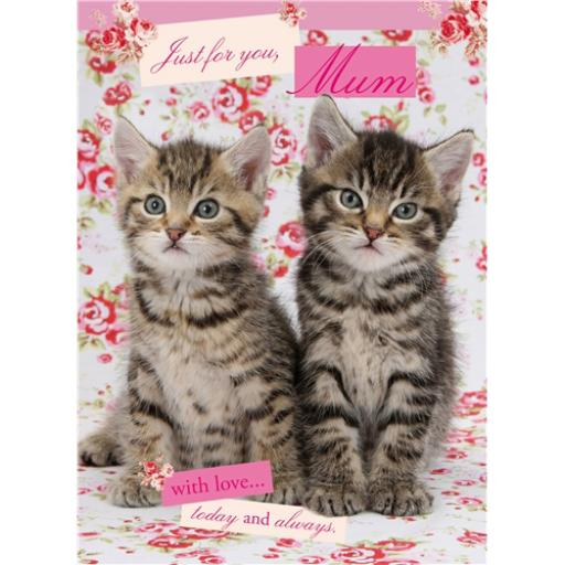 Mother's Day Card - Tabby Kittens