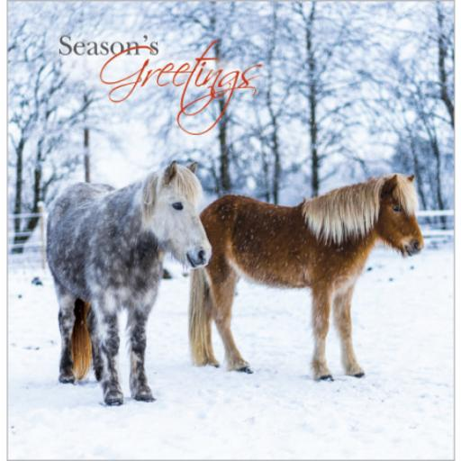 Charity Christmas Card Pack - Christmas Ponies