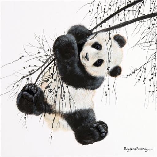Pollyanna Pickering Collection - Panda