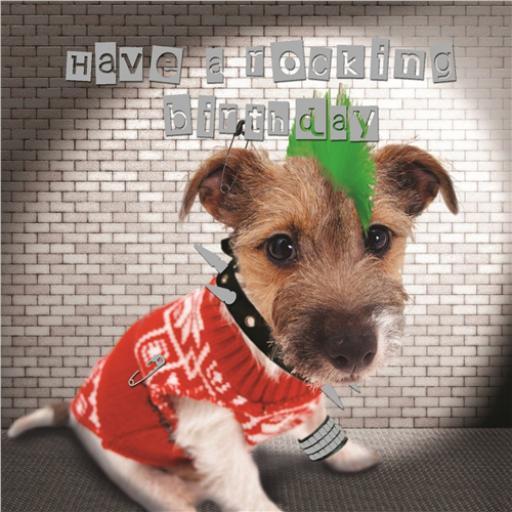 Pet Pawtrait Card - Punk Dog (Birthday Card)