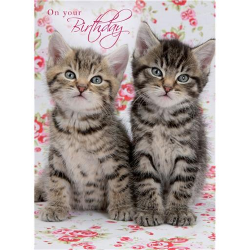 Animal Birthday Card - Tabby Kitten On Roses