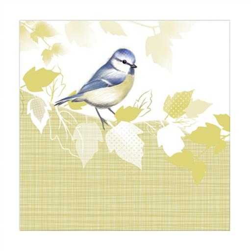 RSPB Nature Trail Card - Blue Tit
