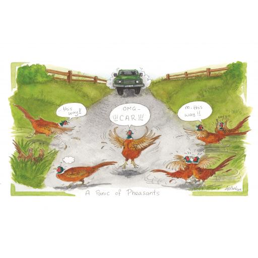 Alison's Animals Card Collection - A Panic Of Pheasants
