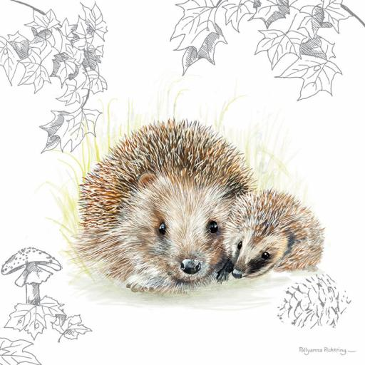 Pollyanna Pickering Countryside Collection Card - Hedgehog Pair