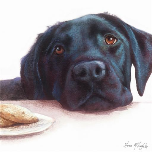 Countryside Collection Card - Watercolour Labrador (Black)