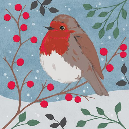 RSPB Small Square Christmas Card Pack - Snow Perching