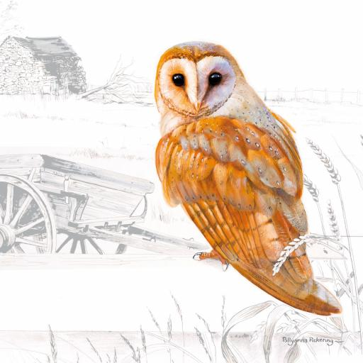 Pollyanna Pickering Countryside Collection Card - Owl