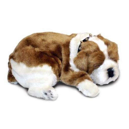 Precious Petzzz - Bulldog