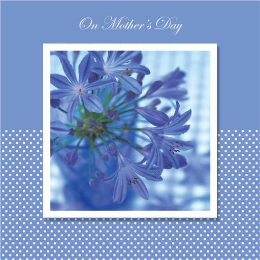 Mother's Day Card - Blue Flowers