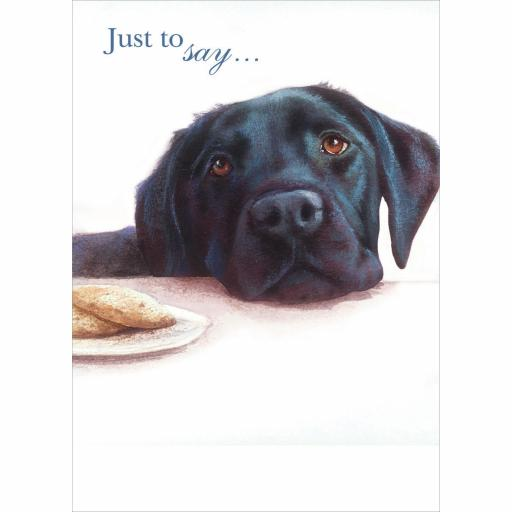 Notecard Pack - Black Labrador