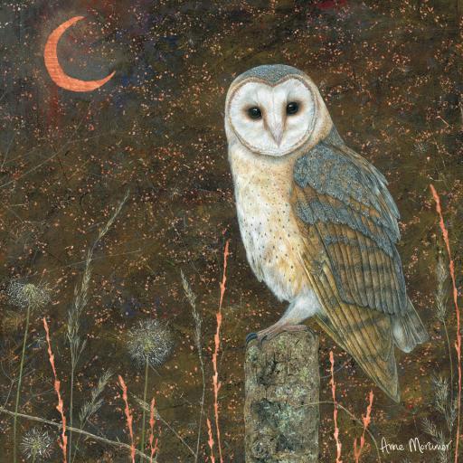 Enchanted Wildlife Card - Barn Owl