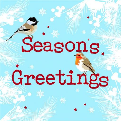 RSPB Small Square Christmas Card Pack - Two Little Birds