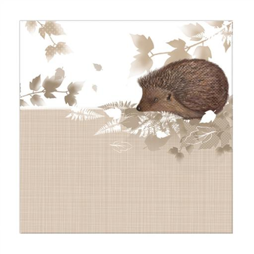 RSPB Nature Trail Card - Hedgehog