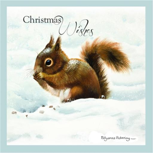 RSPB Small Square Christmas Card Pack - Red Squirrel