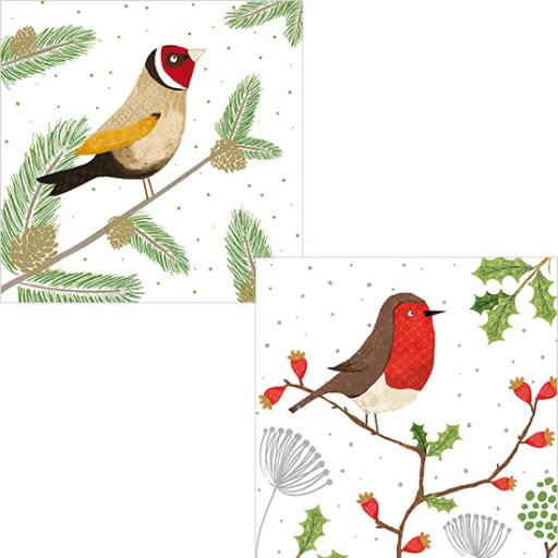 RSPB Luxury Christmas Card Pack - Festive Perching