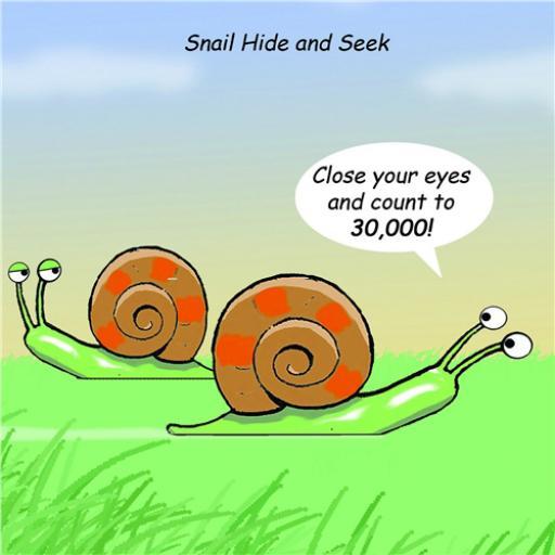 Twizler Card - Snail Hide & Seek