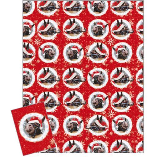 Christmas Wrap & Tags - Christmas Donkeys