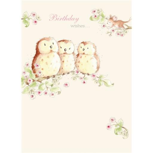 Friends From Bluebell Wood Card - Three Wise Owls