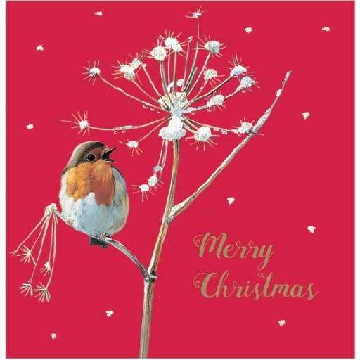 Charity Christmas Card Pack - Red Red Robin