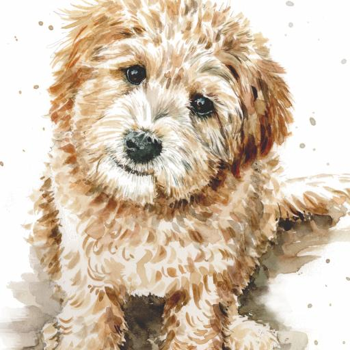 Puppy Dog Eyes Card Collection - Labradoodle Larry