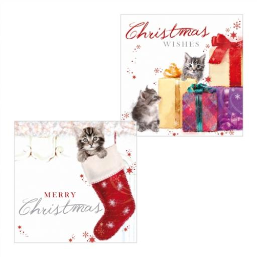 Luxury Christmas Card Pack - Kittens Stocking Sparkle