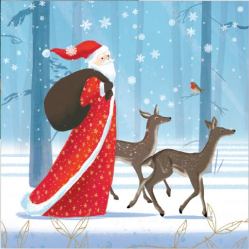 Charity Christmas Card Pack - Woodland Stroll