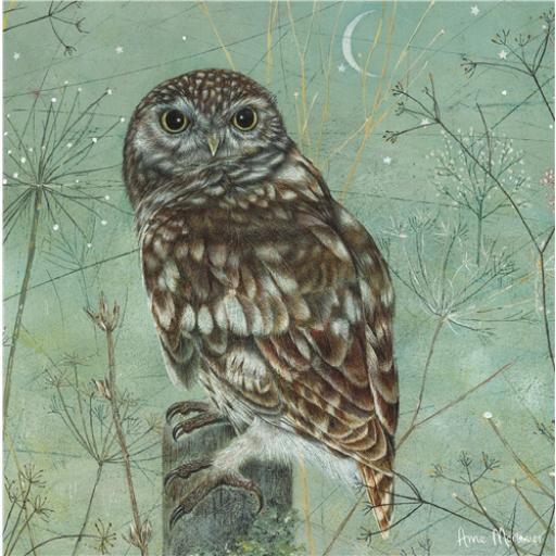 Enchanted Wildlife Card - Owl