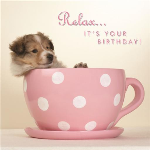 Animal Birthday Card - Pup In A Cup
