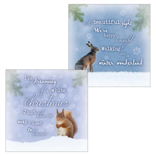 RSPB Luxury Christmas Card Pack - Squirrel & Hare Idyllic Christmas