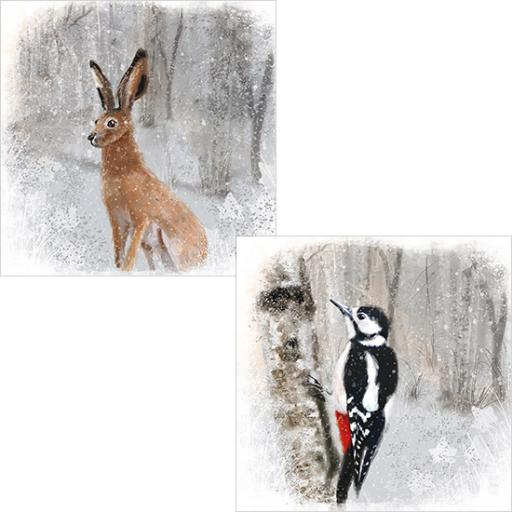 RSPB Luxury Christmas Card Pack - Winter Woodland