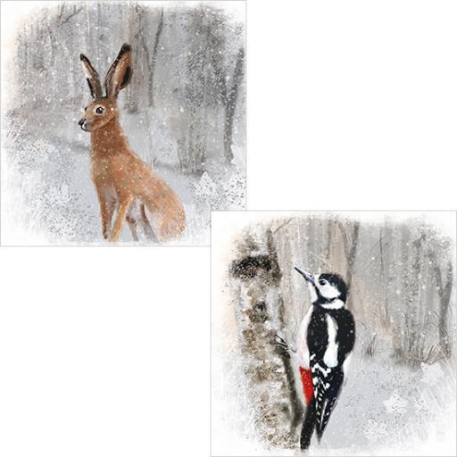 RSPB Luxury Christmas Card Pack - Winter Woodland