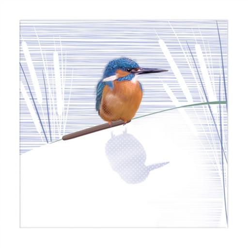 RSPB Nature Trail Card - Kingfisher
