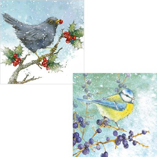 RSPB Luxury Christmas Card Pack - Berries & Birds