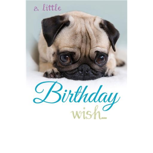 Dinkies Mini Card - Cute Pug Puppy