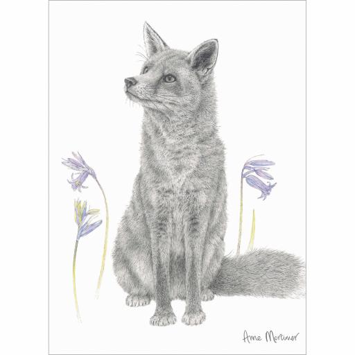 RSPB Card - In the Flowers - Bluebell Fox