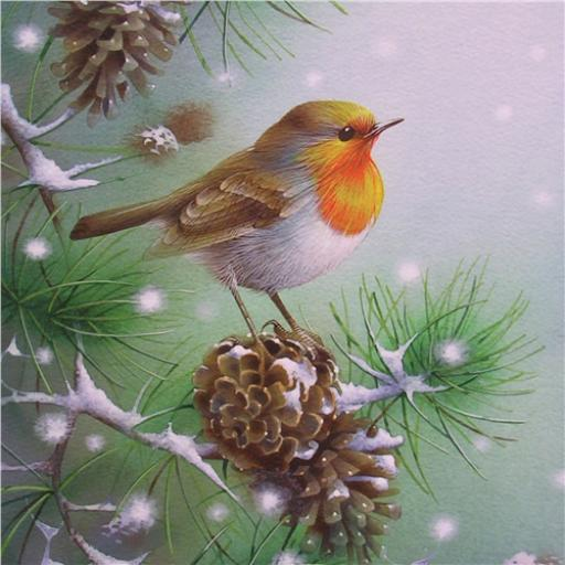 Charity Christmas Card Pack - Robin Fir Falling Snow