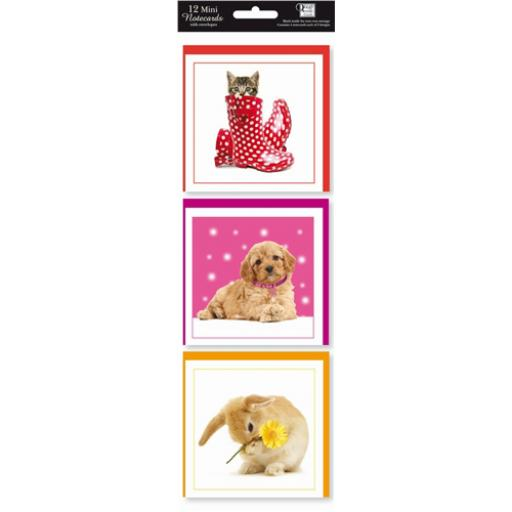 Hanging Notecard Pack - Pet Pawtraits