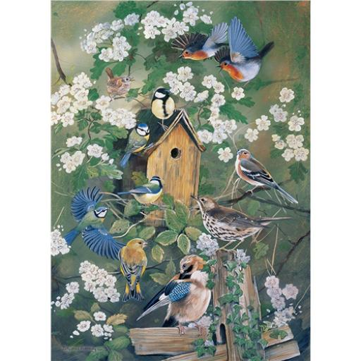 Rectangular Jigsaw - RSPB The Bird House