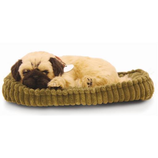 Precious Petzzz - Pug