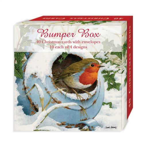 Assorted Christmas Cards - Snowy Robins