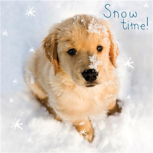 Charity Christmas Card Pack - Snow Time