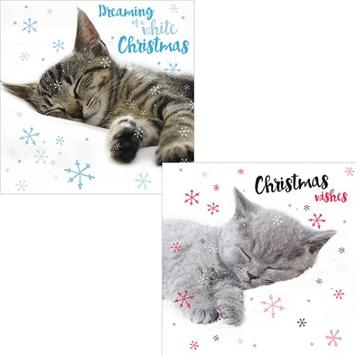 Luxury Christmas Card Pack - Christmas Snoozing