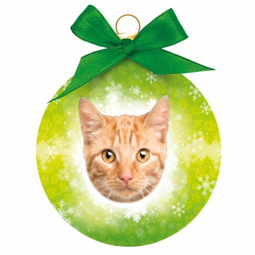 Baubles - Ginger Tabby Cat